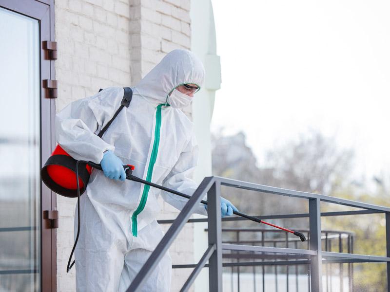 Servicio de limpieza profesional contra el coronavirus COVID-19 en negocios y hogar